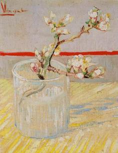 Tige d'amandier en fleur, 1888, Amsterdam
